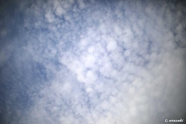 19050404.jpg